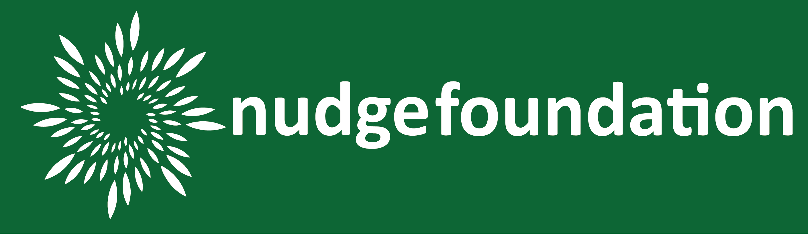 Nudge Foundation